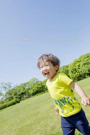 新緑の公園を走る男の子の素材 [FYI01075677]