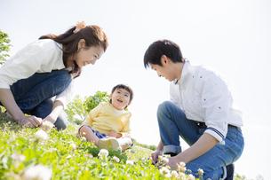公園で遊ぶ家族の素材 [FYI01075686]