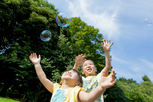 公園でシャボン玉を追う兄と妹の素材 [FYI01075689]