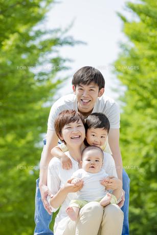 新緑の公園で遊ぶ4人家族の素材 [FYI01075697]