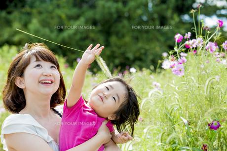 公園で母親と遊ぶ娘の素材 [FYI01075700]