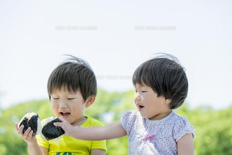 新緑の公園でおにぎりを食べる兄と妹の素材 [FYI01075702]