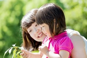 公園で母親とドングリを見る娘の素材 [FYI01075704]