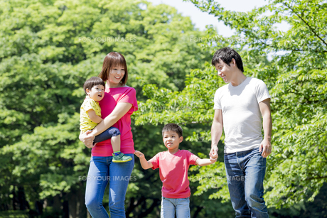 新緑の公園を歩く4人家族の素材 [FYI01075716]