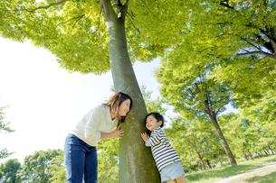 公園の木の下で遊ぶ母親と息子の素材 [FYI01075720]