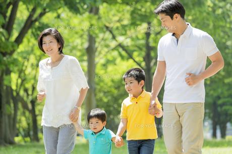 新緑の公園を歩く4人家族の素材 [FYI01075721]