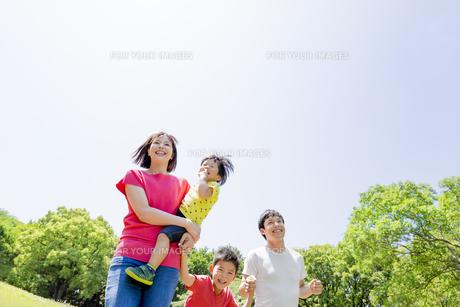新緑の公園を歩く4人家族の素材 [FYI01075727]