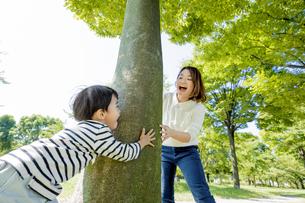公園の木の下で遊ぶ母親と息子の素材 [FYI01075729]