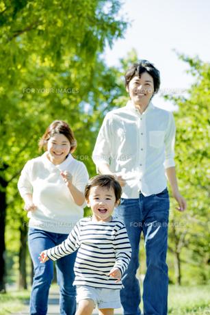公園を走る3人家族の素材 [FYI01075731]