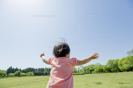 新緑の公園で両手を広げる女の子の素材 [FYI01075742]