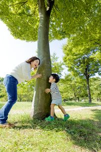 公園の木の下で遊ぶ母親と息子の素材 [FYI01075757]