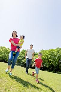 新緑の公園を歩く4人家族の素材 [FYI01075765]