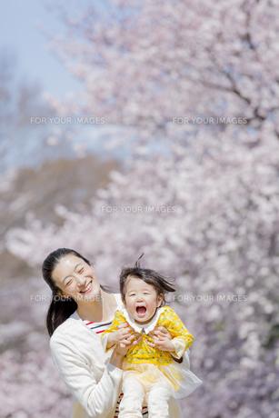 桜の咲く公園で遊ぶ母親と娘の素材 [FYI01075774]