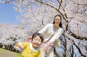 桜の咲く公園で遊ぶ母親と娘の素材 [FYI01075779]