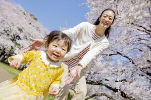 桜の咲く公園で遊ぶ母親と娘の素材 [FYI01075785]