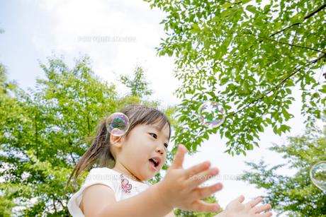 公園でシャボン玉を追う女の子の素材 [FYI01075788]