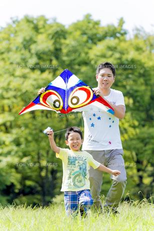 公園で凧揚げをする父親と息子の素材 [FYI01075808]