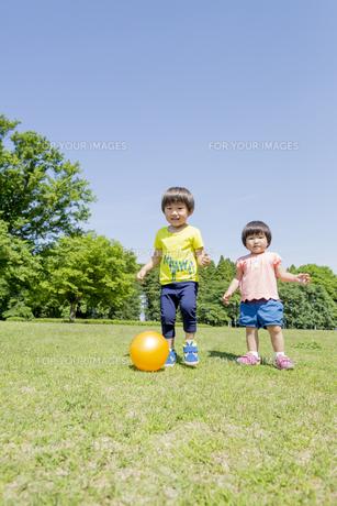 新緑の公園でボールで遊ぶ兄と妹の素材 [FYI01075815]