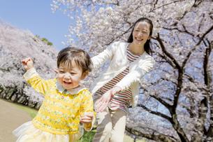 桜の咲く公園で遊ぶ母親と娘の素材 [FYI01075852]