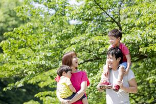新緑の公園を歩く4人家族の素材 [FYI01075863]