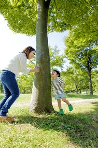 公園の木の下で遊ぶ母親と息子の素材 [FYI01075867]