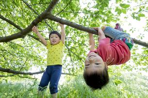新緑の公園で遊ぶ兄弟の素材 [FYI01075869]