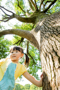 公園の木の下に立つ女の子の素材 [FYI01075899]