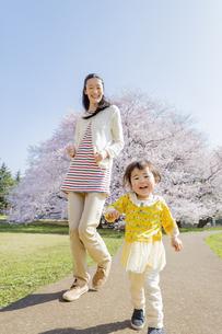 桜の咲く公園で遊ぶ母親と娘の素材 [FYI01075906]