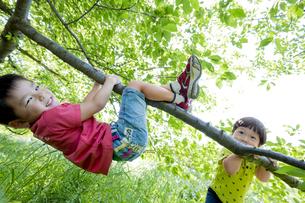 新緑の公園で遊ぶ兄弟の素材 [FYI01075913]