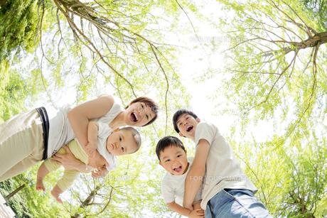 新緑の公園で遊ぶ4人家族の素材 [FYI01075919]