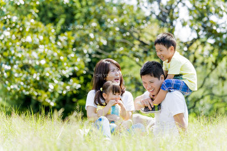 公園で遊ぶ4人家族の素材 [FYI01075929]