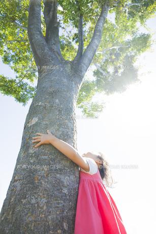 公園で木に抱きついて見上げる女の子の素材 [FYI01075930]