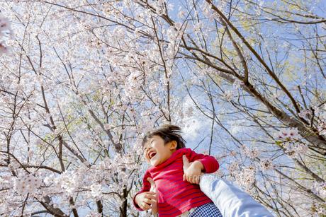 桜の咲く公園で父親に抱き上げられる息子の素材 [FYI01075941]
