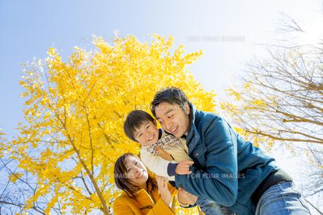 紅葉の公園で遊ぶ息子と両親の素材 [FYI01076027]