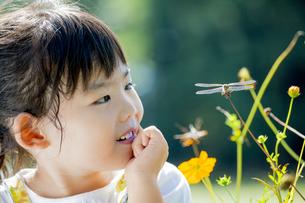 公園でトンボを見つめる女の子の素材 [FYI01076035]
