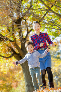 紅葉の公園を走る母親と息子の素材 [FYI01076047]