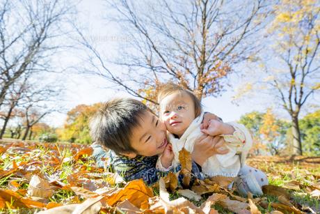 落葉の公園で遊ぶ兄と妹の素材 [FYI01076055]