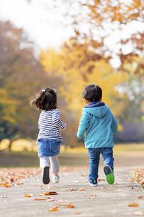 秋の公園を走る男の子と女の子の後ろ姿の素材 [FYI01076068]