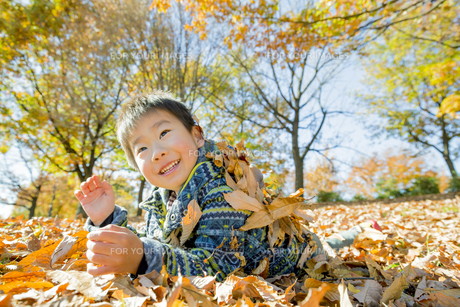 落葉の公園で遊ぶ男の子の素材 [FYI01076069]