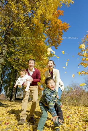 紅葉の公園で遊ぶ人家族の素材 [FYI01076093]