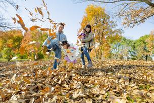 紅葉の公園で落葉遊びをする4人家族の素材 [FYI01076104]