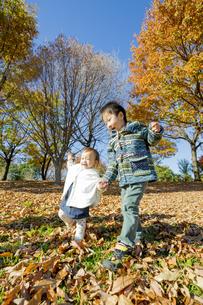 落葉の公園で遊ぶ兄と妹の素材 [FYI01076126]