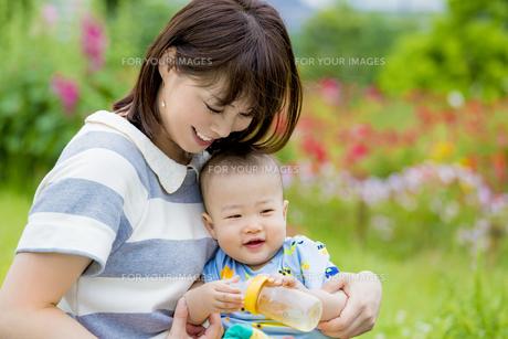 公園で息子を抱く母親の素材 [FYI01076146]