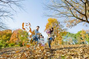 紅葉の公園で落葉遊びをする4人家族の素材 [FYI01076148]
