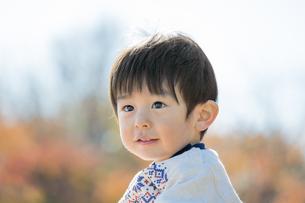 紅葉の公園で見つめる男の子の素材 [FYI01076154]