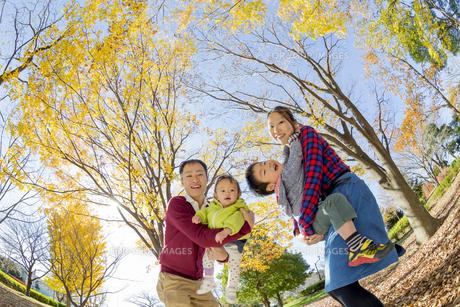 紅葉の公園で遊ぶ4人家族の素材 [FYI01076161]