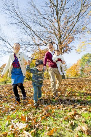 紅葉の公園を手をつないで歩く4人家族の素材 [FYI01076185]