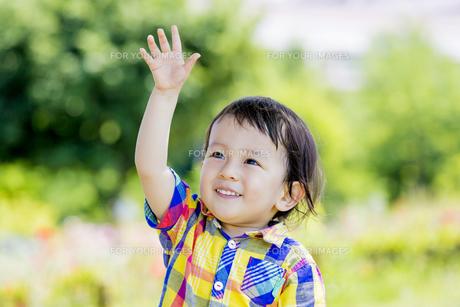 公園で手を上げる男の子の素材 [FYI01076222]