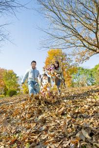 紅葉の公園で落葉遊びをする4人家族の素材 [FYI01076232]