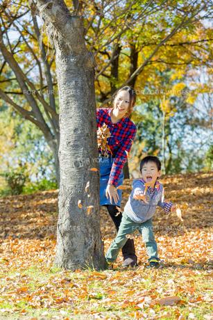 紅葉の公園で遊ぶ母親と息子の素材 [FYI01076263]